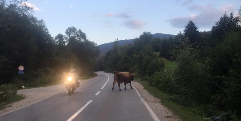 Sarajevo traffic