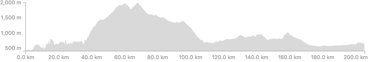 TCR Day 12 profile